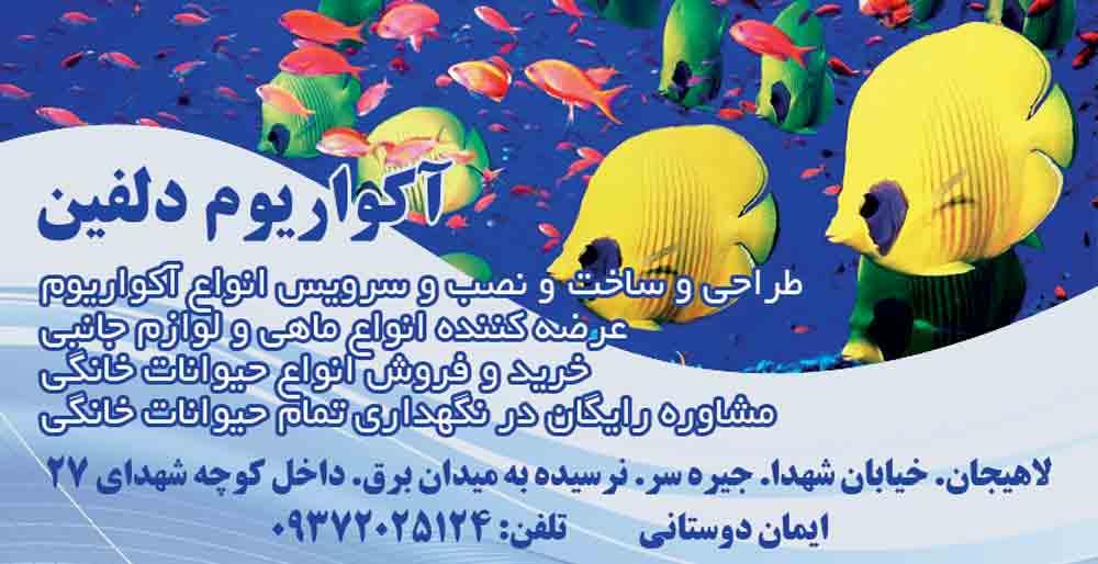 آکواریوم دلفین در لاهیجان