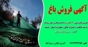 آگهی فروش باغ در رستم آباد