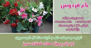 باغ فردوس در کیش