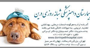 بیمارستان دامپزشکی شبانه روزی درین در تهران