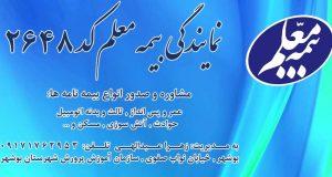 نمایندگی بیمه معلم کد 2648 در بوشهر