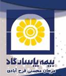 بیمه پاسارگاد مرجان محسنی فرح آبادی در مازندران