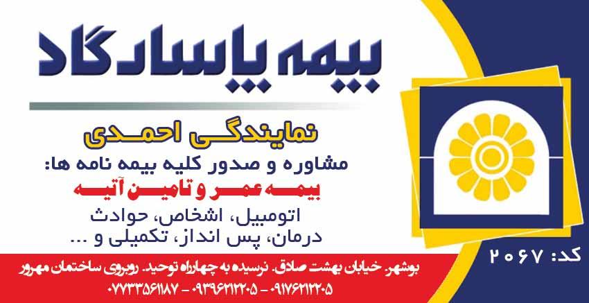 نمایندگی بیمه پاسارگاد کد۲۰۶۷ در بوشهر