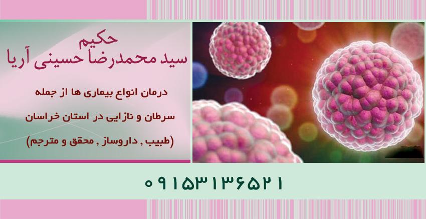 حکیم سید محمدرضا حسینی آریا
