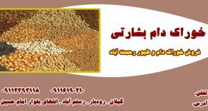 خوراک دام رحمت آباد در رودبار