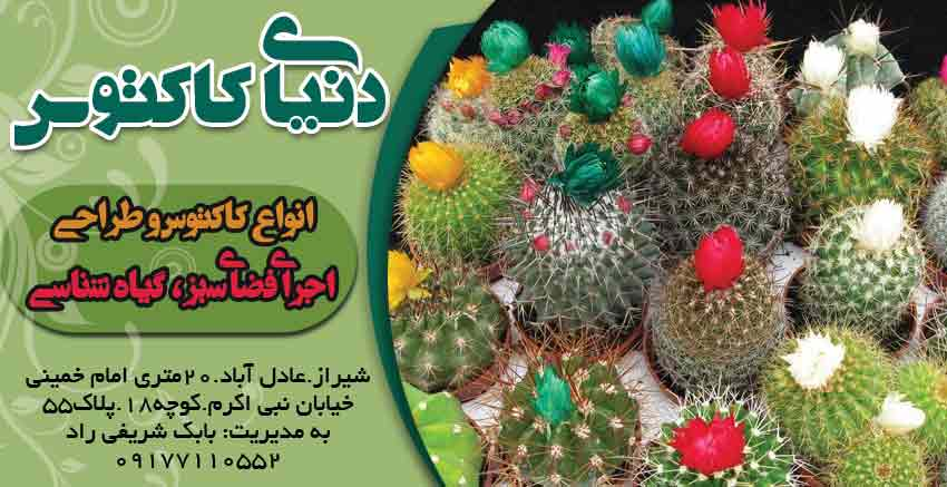 دنیای کاکتوس در شیراز