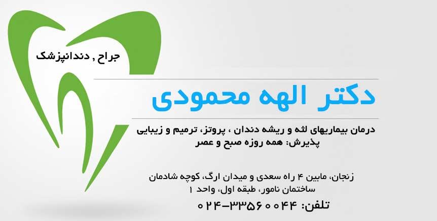 دکتر الهه محمودی در زنجان