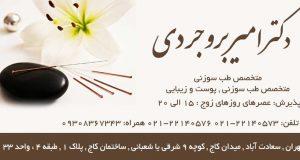 دکتر امیر بروجردی متخصص طب سوزنی در تهران