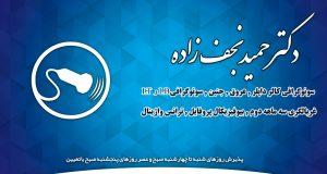 دکتر حمید نجف زاده در تهران