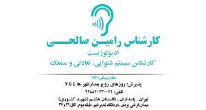 کارشناس رامین صالحی در تهران