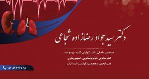 دکتر سیدجواد رضازاده شجاعی در تربت حیدریه
