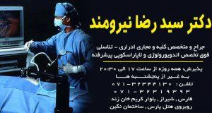 دکتر سید رضا نیرومند در شیراز