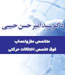 دکتر سید امیرحسن حبیبی در تهران