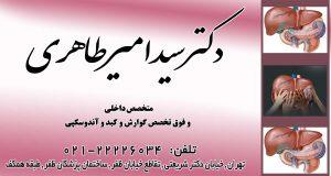 دکتر سید امیر طاهری در تهران