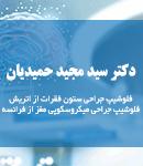 دکتر سید مجید حمیدیان در تهران