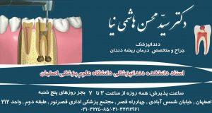 دکتر سید محسن هاشمی نیا در اصفهان