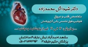 دکتر شیدا گل محمدزاده در مشهد