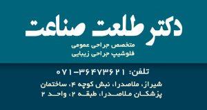 دکتر طلعت صناعت در شیراز