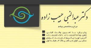 دکتر عبدالنبی حبیب زاده در تهران