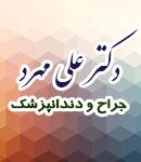 دکتر علی مهرد در زنجان