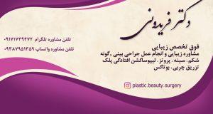 دکتر فریدونی در بوشهر