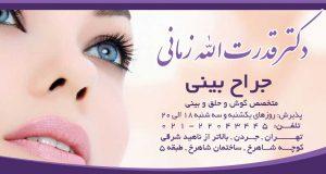 دکتر قدرت الله زمانی در تهران