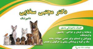 دکتر مجتبی سخایی دامپزشک در مشهد