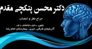 دکتر محسن پتکچی مقدم در تبریز