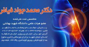 دکتر محمد جواد فیاض در تهران