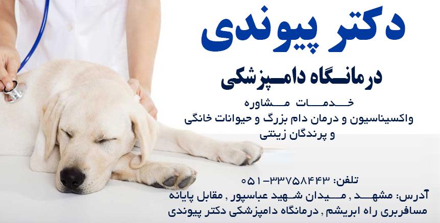 دکتر پیوندی در مشهد