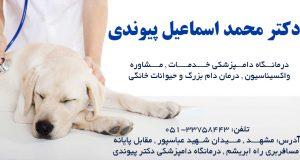 دکتر محمد اسماعیل پیوندی در مشهد