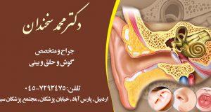 دکتر محمد سخندان در اردبیل