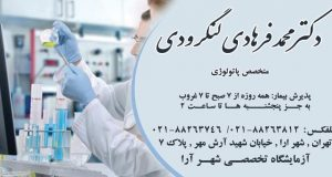 دکتر محمد فرهادی لنگرودی در تهران