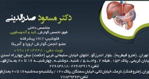 دکتر مسعود صدرالدینی فوق تخصص گوارش در شمال و شرق تهران