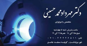 دکتر مهرداد محمدحسینی در شیراز