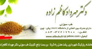 دکتر مهرداد کاظم زاده در کرمانشاه