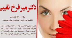 دکتر میر فرخ نقیبی در تهران