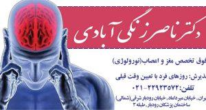 دکتر ناصر زنگی آبادی در تهران