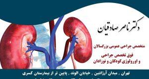 دکتر ناصر صادقیان در تهران