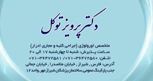 دکتر پرویز توکل در شیراز