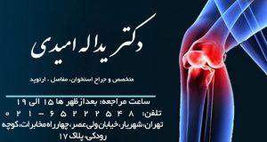 دکتر یداله امیدی در تهران