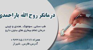 روح الله یاراحمدی در شیراز