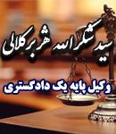 سید شکرالله هژبرکلالی در مشهد