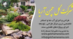 طراحی و اجرای فضای سبز روف گاردن و آب نما در تهران