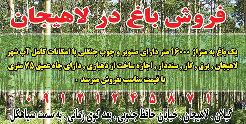 فروش باغ در لاهیجان