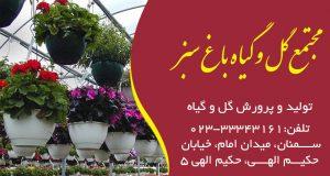 مجتمع گل و گیاه باغ سبز در سمنان