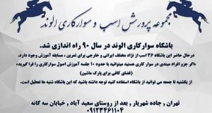 مجموعه پرورش اسب و سوارکاری الوند در تهران