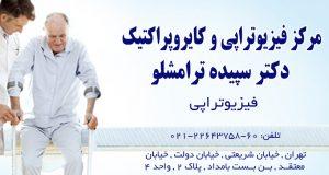 مرکز فیزیوتراپی و کایروپراکتیک دکتر سپیده ترامشلو در تهران