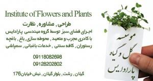 موسسه گل و گیاه پارادایس