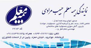 نمایندگی بیمه معلم حبیب مرادی در کرمانشاه